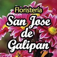 floristeria-san-jose-galipan
